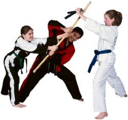 Martial Arts A Global Overview