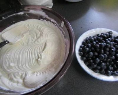 Pudding and Blueberries