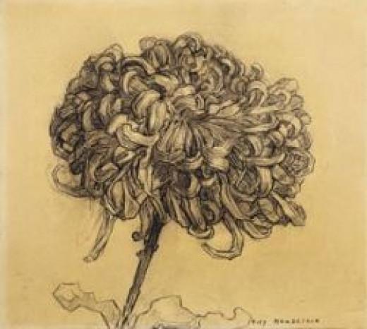 Piet Modrian - Chrysanthemum, 1908â09. Charcoal on paper