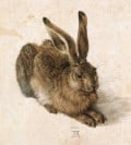 The best drawings of animals by famous artists