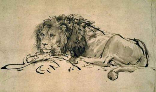 Lion - Rembrandt