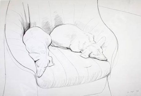 two dogs, by David Hockney