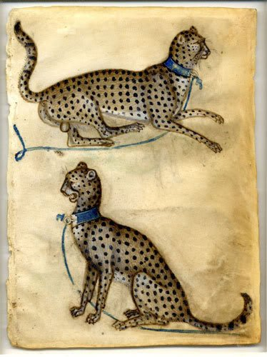 Drawings of animals - two cheetahs