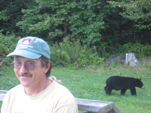 John and the Bear in our Yard
