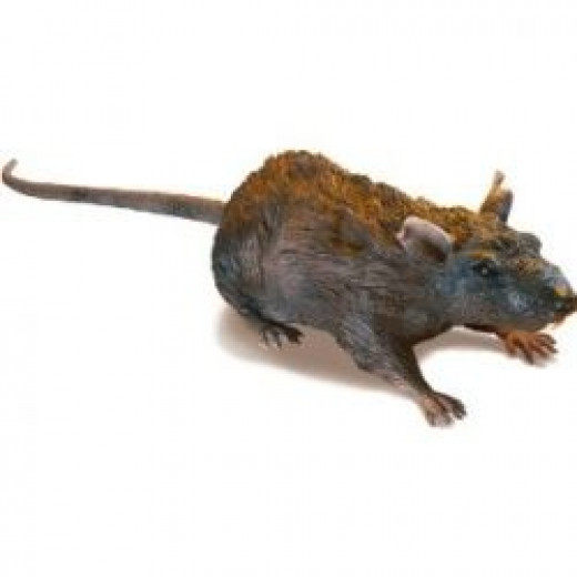 Radio Control Rat - by Amazon (picture from Amazon)