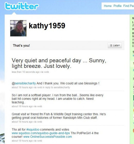 "A few of my Twitter ""Tweets"" - not too much advertising"