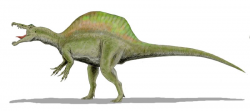 Spinosaurus Dinosaur Picture