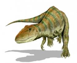 Carcharodontosaurus Dinosaur Clip Art