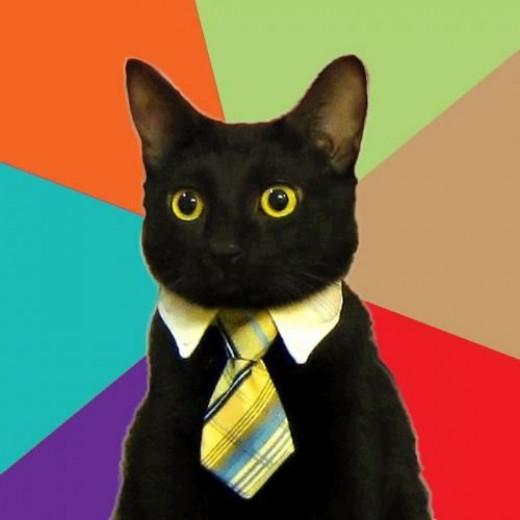 Business Cat Blank