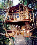 5 Truly Amazing Treehouse Hotels