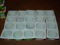 Reuse Plastic Yogurt Containers