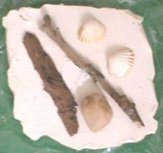 Plaster of Paris fossil making