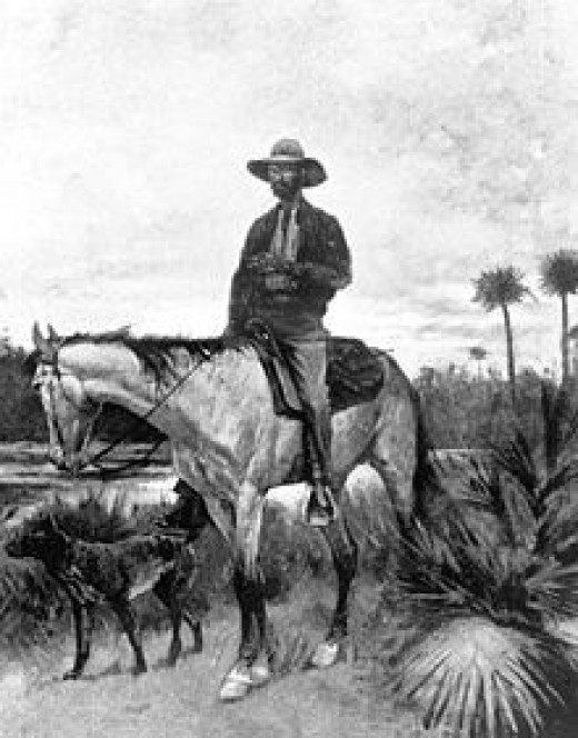 A Florida Cracker horse and Cowboy - 1895 drawing