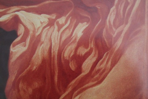 Close of of the orange fabric on Flaming June print.