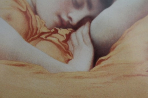 A close up of the bend of Flaming June's hand.