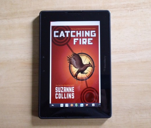 One of the books my husband read with this tablet.