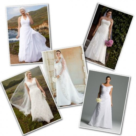 Plus size wedding dresses from David's Bridal