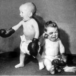 August 4th - Boxing Babies