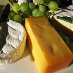 Should vegetarians eat cheese?