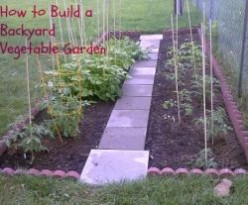 How to Build a Backyard Vegetable Garden