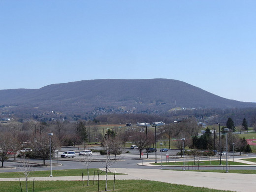 Mount Nittany is near the school and legends state that mountain lions lived there in the past. Nittany is a Native American term for a single mountain.