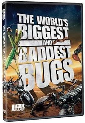 Animal Planet's The World's Biggest and Baddest Bugs