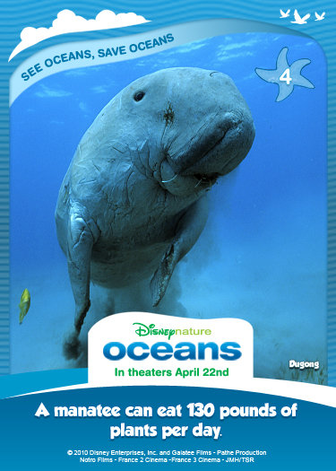 Disney Nature Oceans