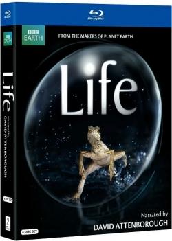 BBC Life Series