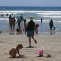 Beach fun, Southern California style