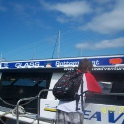 Glass Bottom Boat Tour, Catalina Island