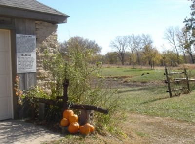 Pumpkins and Turkeys at Grandview Ranch - Fun! ;-)