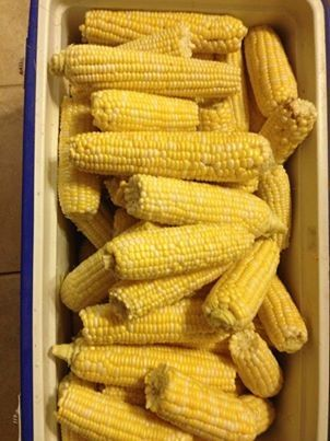Corn can be blanched, bagged, and stored in the freezer