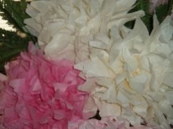Paper Crafts to Make Giant Peonies for Beautiful Flower Arrangements