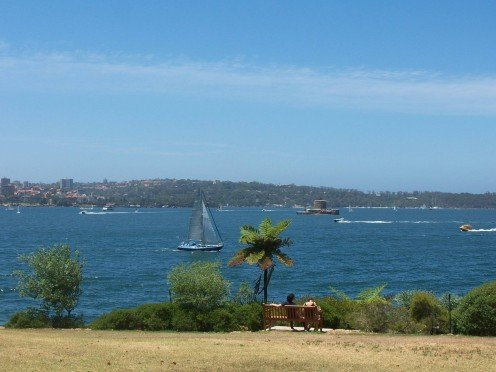 View of the Sydney Harbour from the Botanical Gardens