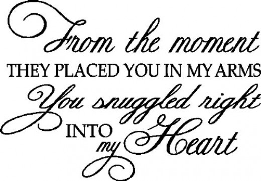 From the Moment they Put You in My Arms...Wall Quote