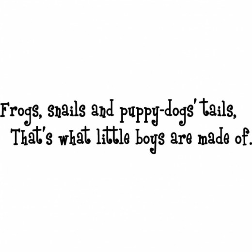 Frogs, Snails & Puppy Dog Tails