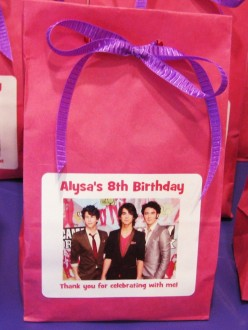 Jonas Brothers Party Favor Bags