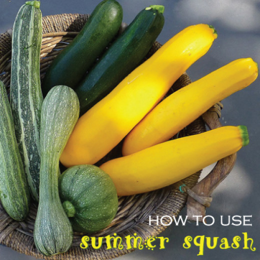 How To Use Summer Squash