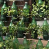 Gardening with Recycled Plastic Bottles