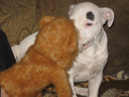 Still love my monkey toy.