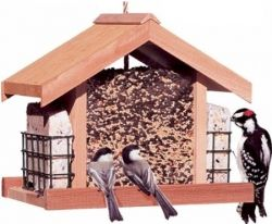 Bird feeder from Amazon
