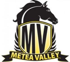 Metea Valley High School - Home of the Mustangs