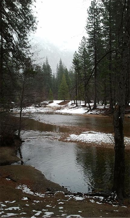 The Merced River runs through the Yosemite Valley floor.