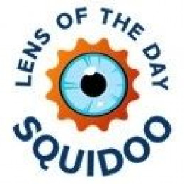 type=bsa lens of the day badge