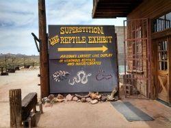 Live Reptile Exhibit