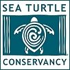 Sea Turtle Conservance