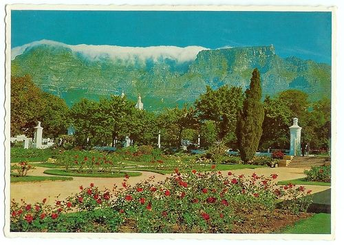 Old Table Mountain Postcard