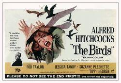 The Birds Movie Promo