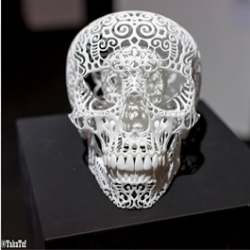 Skull made by Joshua Harker and displayed at the 3D Print Show 2013, Carrousel du Louvres, Paris.