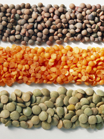 Green, Red and Brown Lentils (Lens Culinaris) Photographic Print